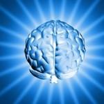 cropped-cerveau.jpg